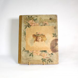 "Victorian Children's Book ""Birds and Blossoms"" - Chromo Lithographs"
